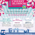 Cherry Blossom Festival Lantern Workshop-Feb 18